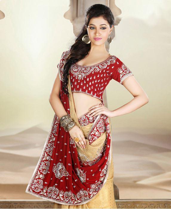 Picture of Amazing Red/Gold Shimmer Saree